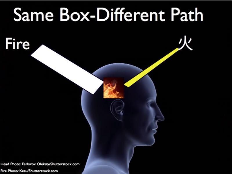 同じ箱、異なる道